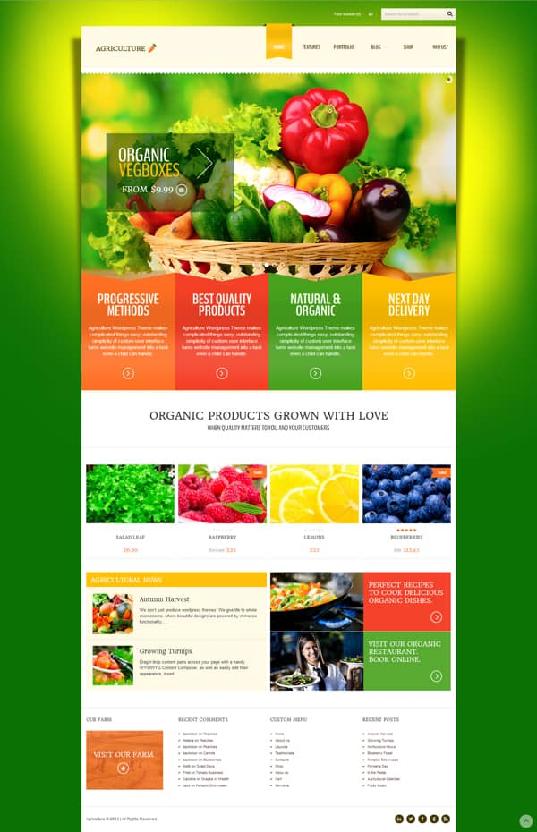 Organic Natural Websites Lifestyle