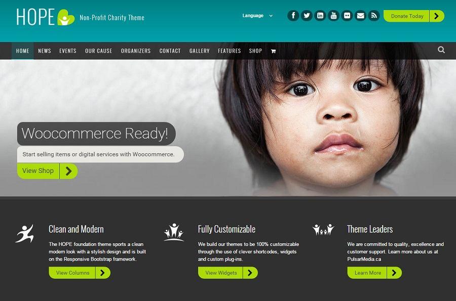 Best CHARITY WORDPRESS Themes UPDATED WebCreateMe - Non profit websites templates