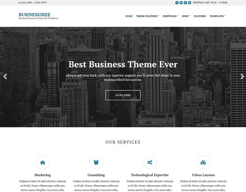 business theme on cssingniter