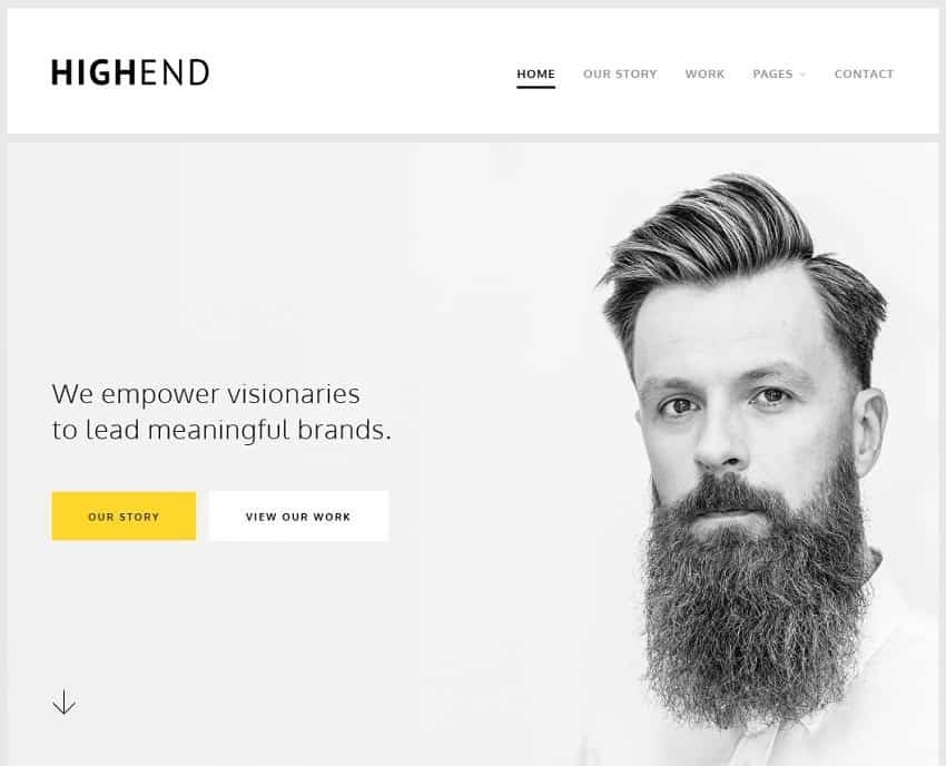 universal wordpress theme for business websites