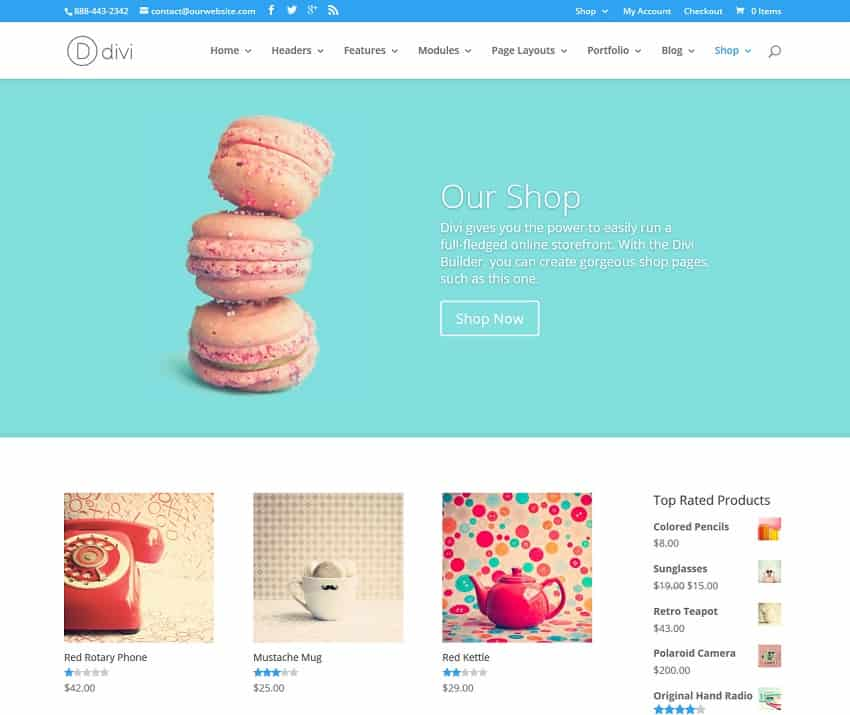 divi wordpress theme ecommerce version