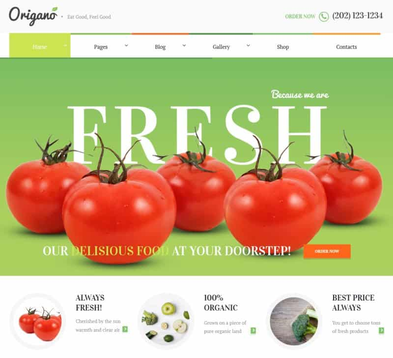 81 best responsive free wordpress themes with slider download template.