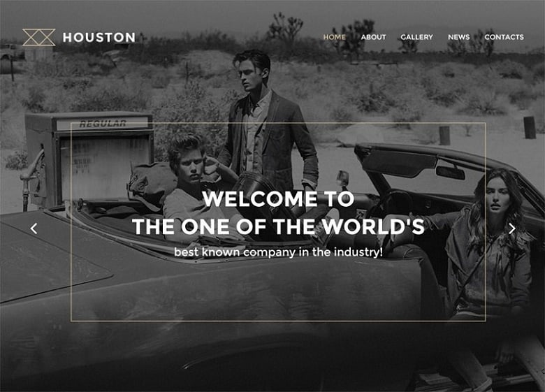 houston professional and simple theme