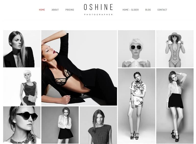 oshine photography theme